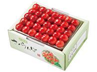 山形産さくらんぼ「佐藤錦」(500g手詰 ・5,000円)