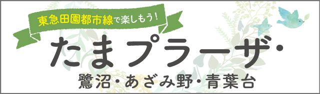 東急田園都市線で楽しもう!